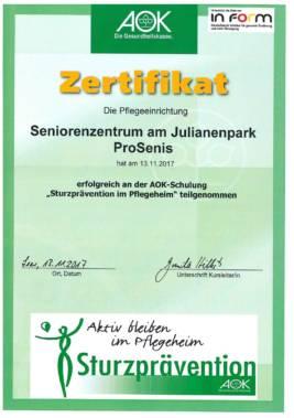 Zertifikat Sturzprävention